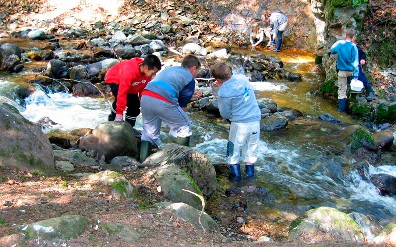 Classe d'eau en Auvergne | Élément Terre - étude de cours d'eau