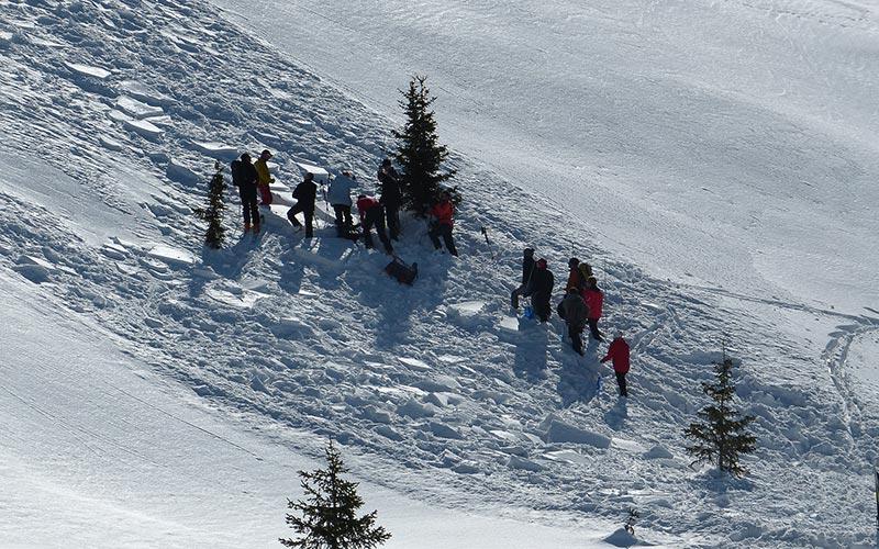 Classe de montagne en hiver en Auvergne | Élément Terre