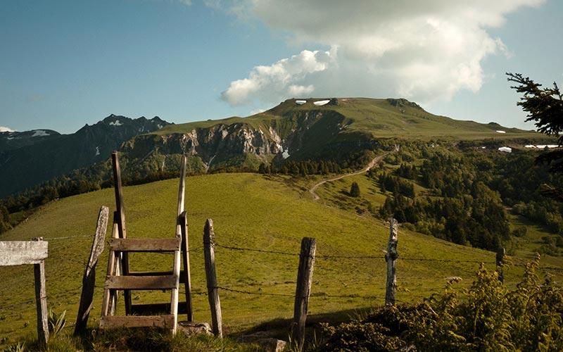 Classe de montagne printemps/automne en Auvergne | Élément Terre - © Alpha du centaure-Flickr - paturage d'Auvergne
